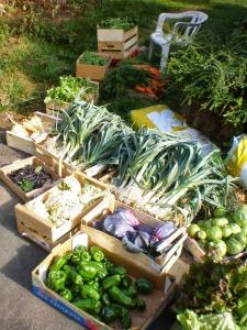 légumes jardins bio petite Rabaudière